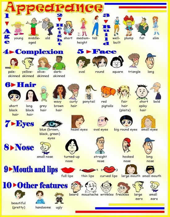 Appearance Vocabulary Visual Method Vocabulary Study on Ordinal Numbers