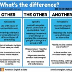 what is the difference- other - the other - another
