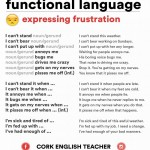 functional language - english speaking