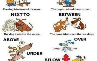 Prepositions of place -visual