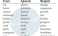 Nouns Frequently Used With Fast, Quick and Rapid