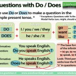 Questions with Do and Does