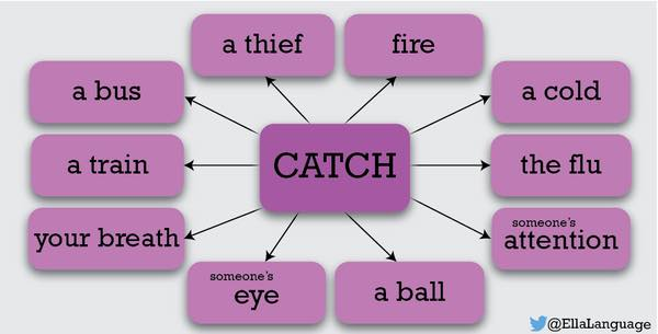 collocations with catch