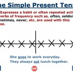 The Simple Present Tense-1
